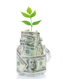 Money in glass jar with plant